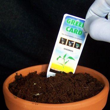 Zaadjes planten met de Greencard