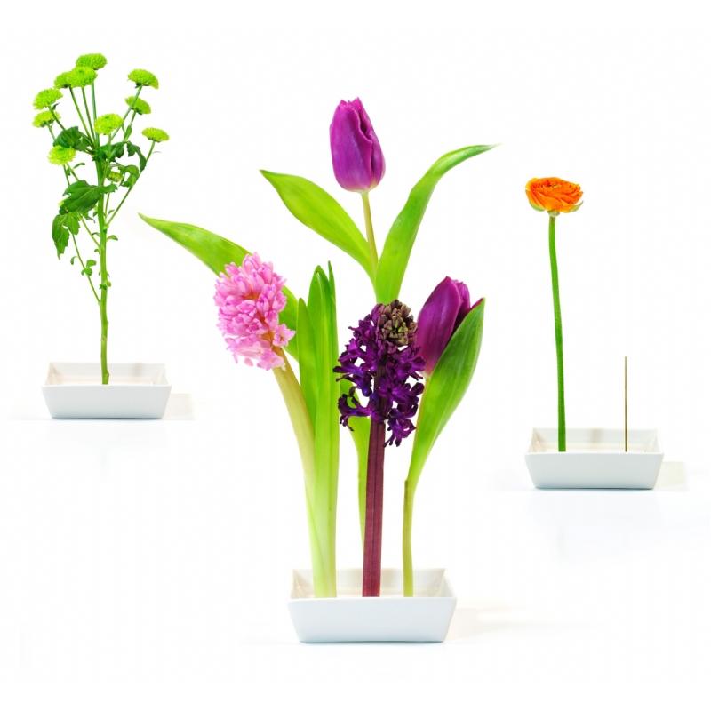 Bloemenschaal met drijvend logo