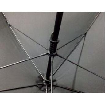 Paraplu ster