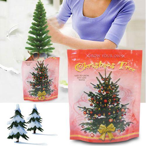 Plant uw eigen kerstboom